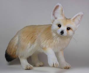 Fennec Fox by LisaAP