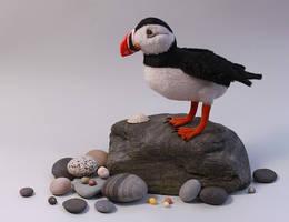 Iolo the Atlantic puffin