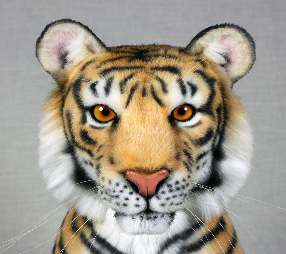 Bengal Tiger by LisaAP