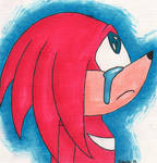 Crying Knux