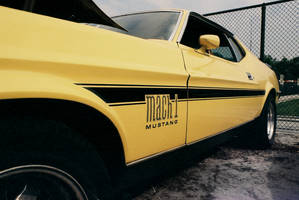 Mustang Mach 1 by Vipervelocity