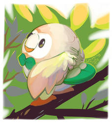 Rowlet Sees You!