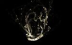 Apophysis-100929-20