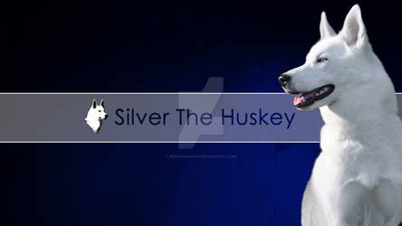 YouTube Channel Silver