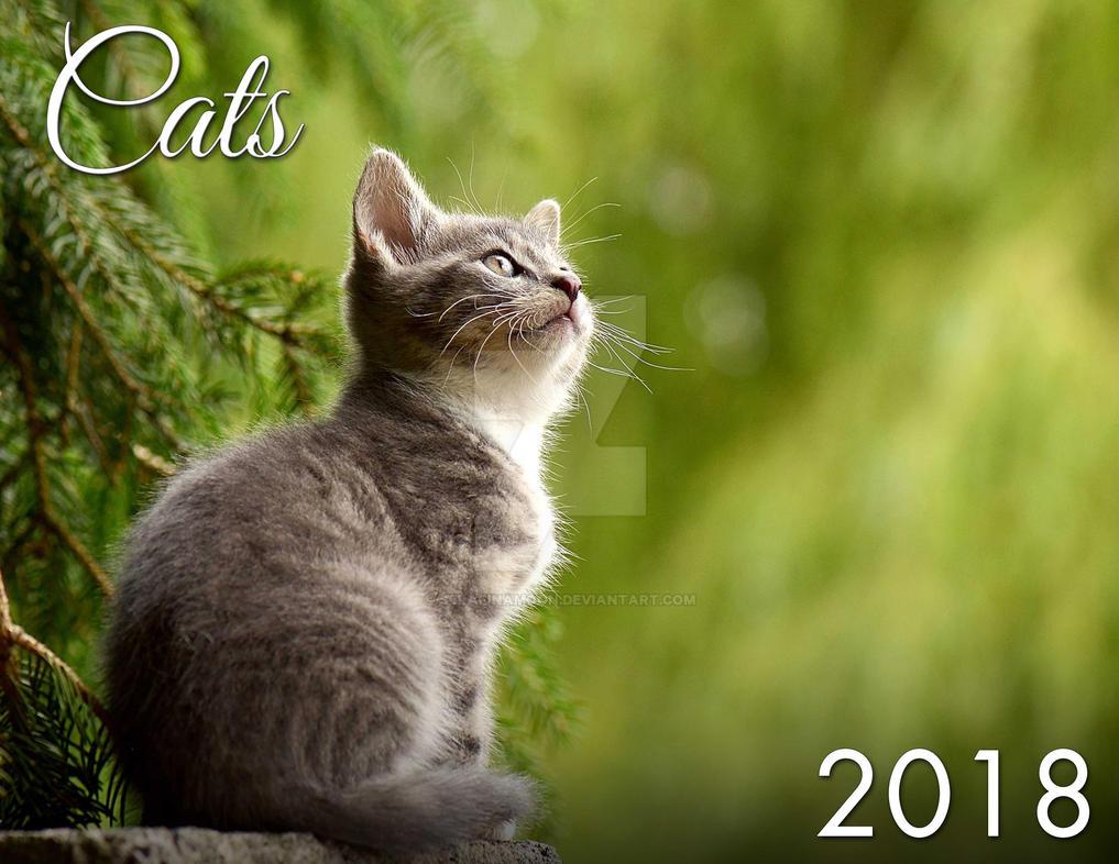 2018 Cat and Kitten Calendar by SerafinaMoon