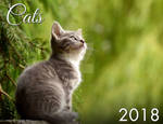 2018 Cat and Kitten Calendar