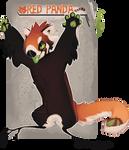 Red Panda NebNom
