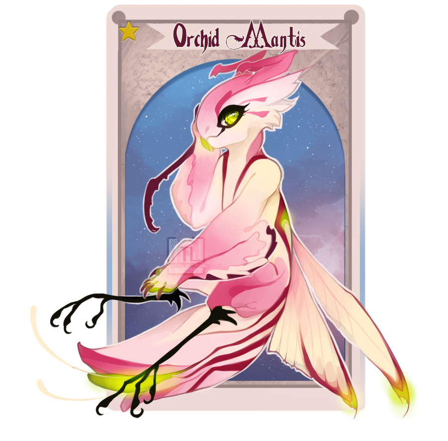 Orchid Mantis [NN] by Thalliumfire
