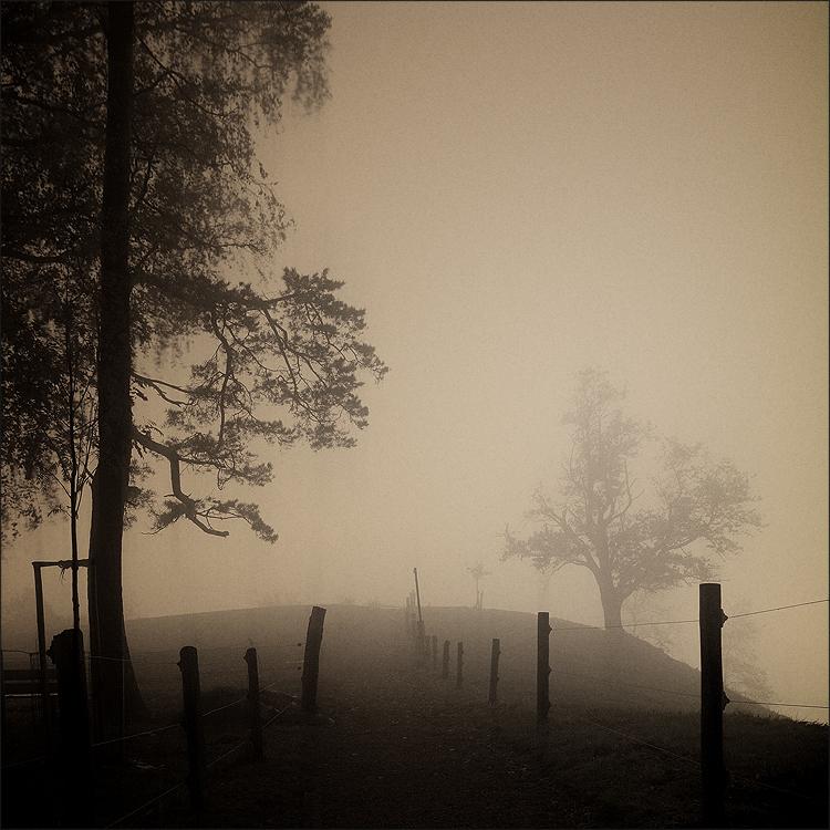 Silent hill II by Osiris81