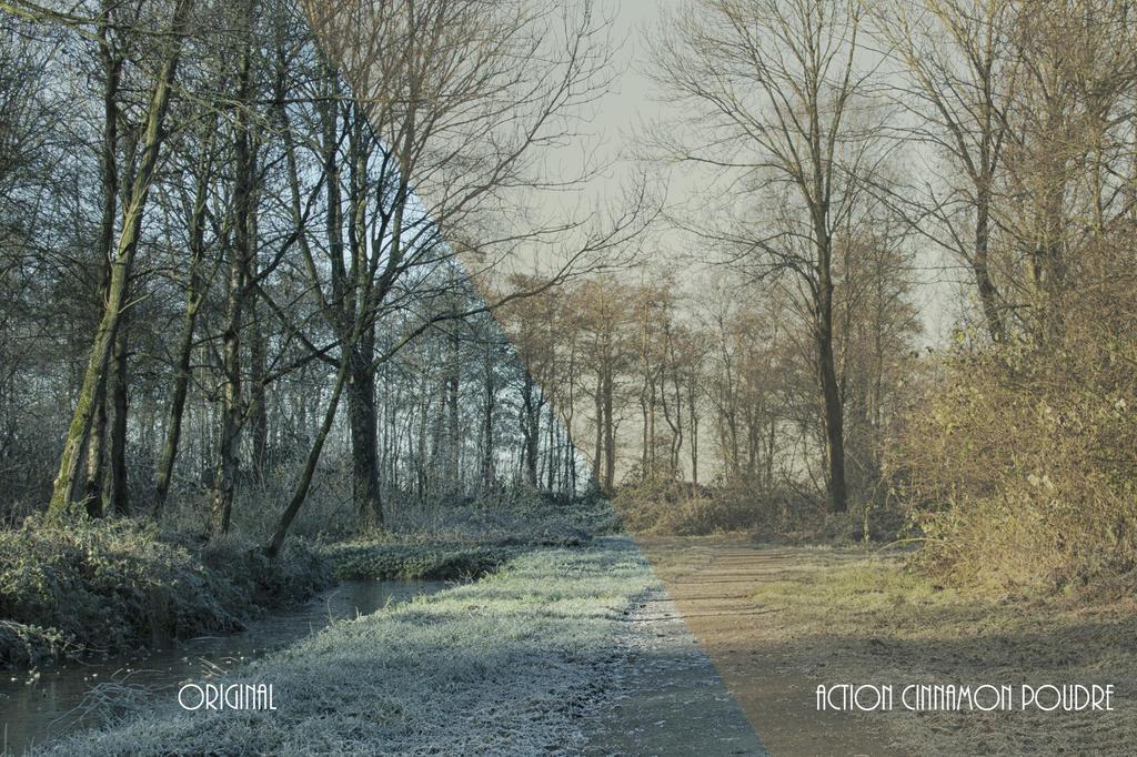 Action by SlichoArt