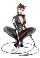 Catwoman  fanart 2 by Little-Ginkgo
