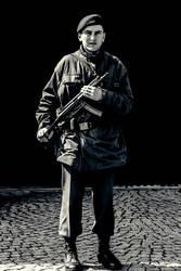 Istanbul Palace Guard by Ironpaw