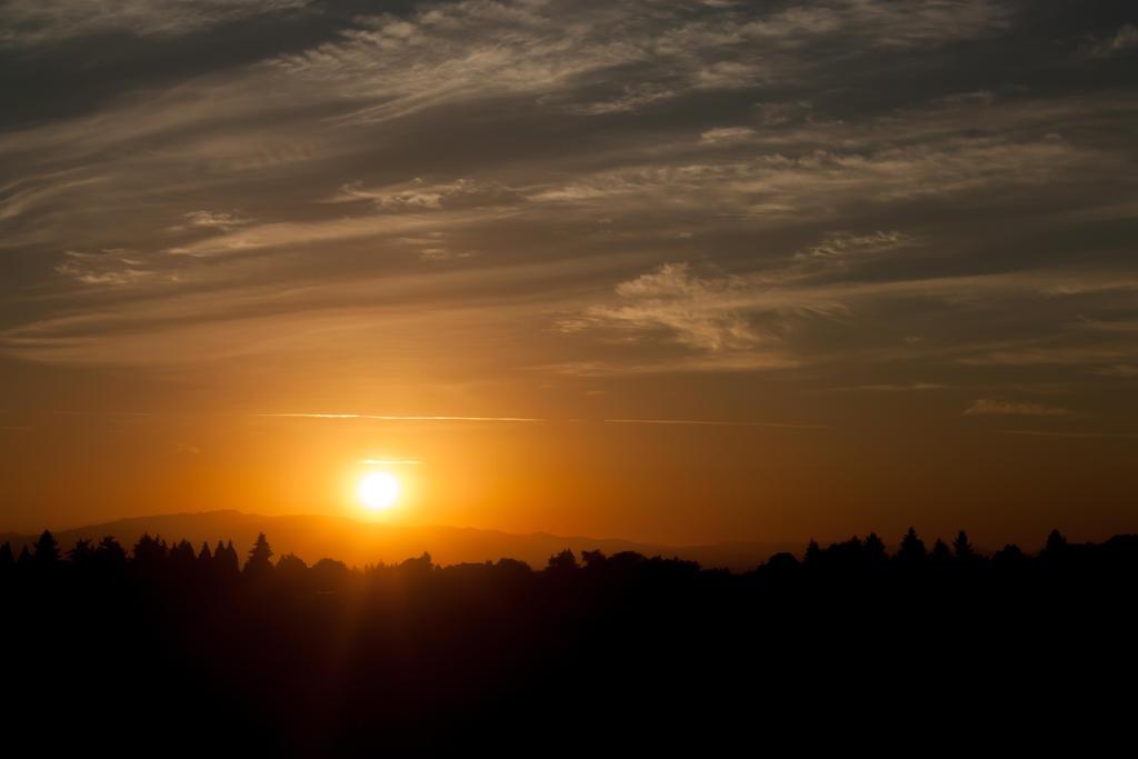 Early Morning Sunrise by designerfied on DeviantArt