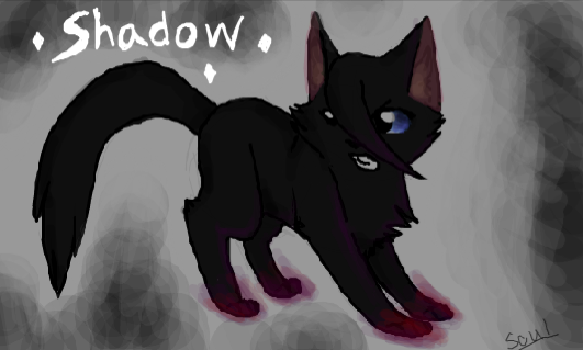 Shadow (OC) by SoulCats