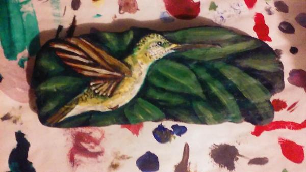 Hummingbird by Erikjr21