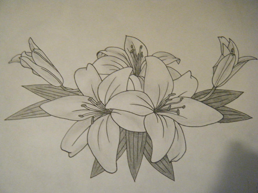 Lily tattoo finsihed by jess wood on deviantart for Lily rose designer