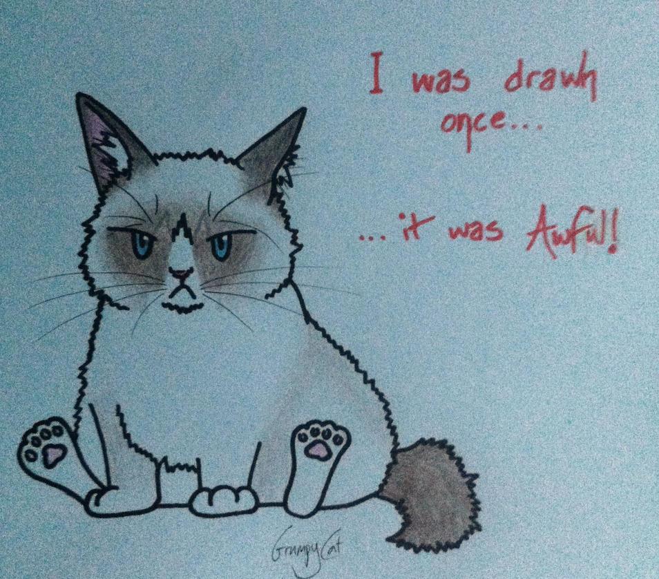 Grumpy Cat by jess-wood