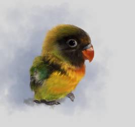 Bird sketch by NemuruT