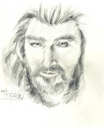 Thorin king under the Mountain by Anneuh