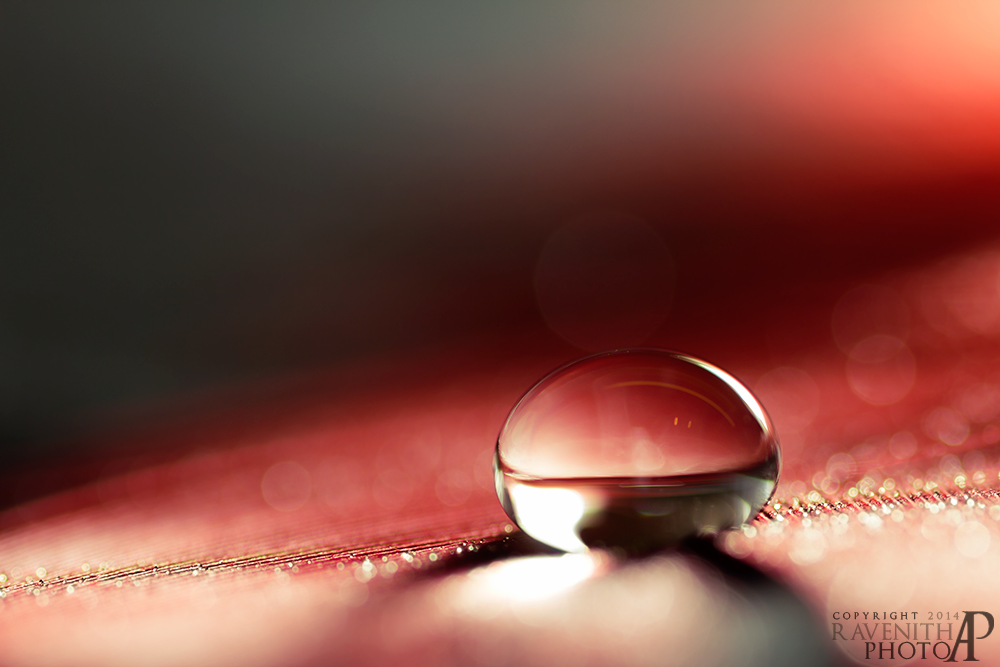 Red droplet II. by Ravenith