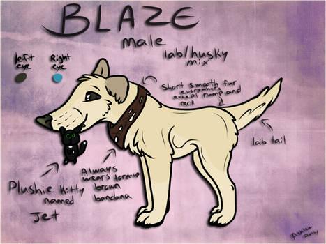 Blaze Contest Entry