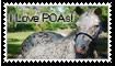 I Love POAs by Larah88