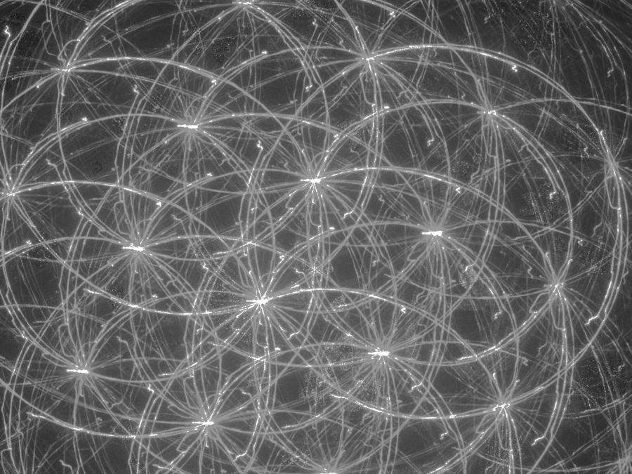 Image hotlink - 'http://fc03.deviantart.net/fs71/i/2011/051/6/b/spiral_texture___grey_by_hkw1994-d39z9pk.jpg'