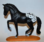 CM Breyer Totilas - Black Warmblood to Sportaloosa by HKW1994