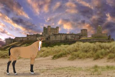 King | Castle by HKW1994