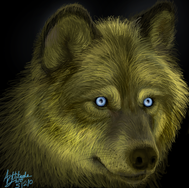 Golden Wolf by AttitudeTwo