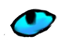 Cat eye TEST by Distelblatt
