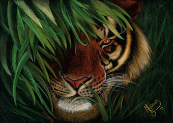 Tiger Invert by mascarum