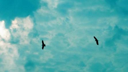 Feathery friends by Mischievous-Hyena