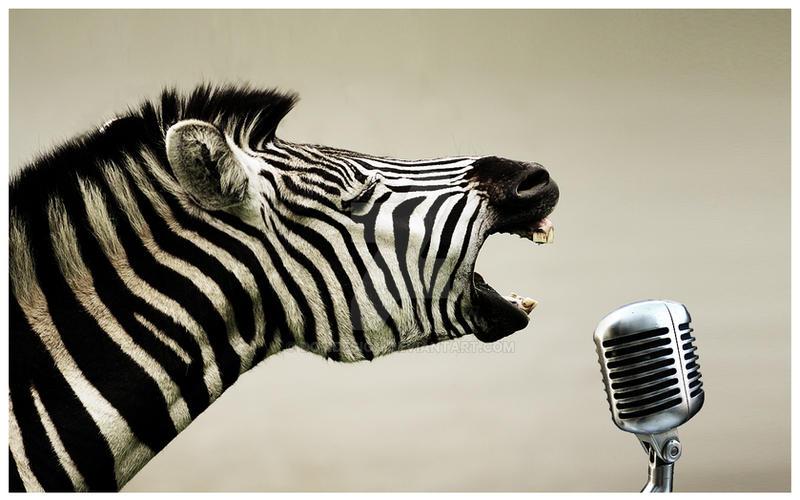 Rock n Roll Zebra by DOMDESIGN