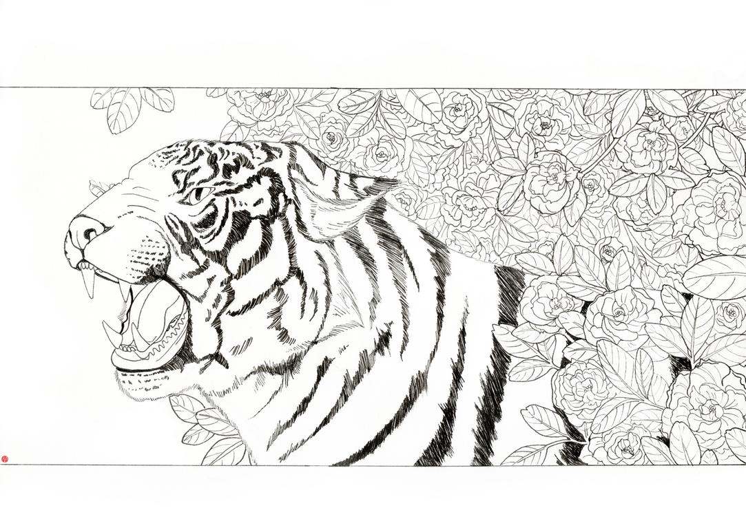 Chinese Flower Line Drawing : Chinese tiger line drawing