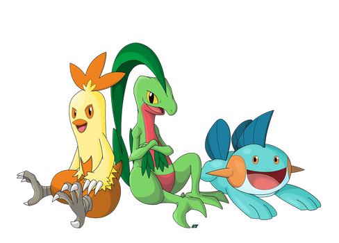 Pokemon Gen 3: Hoenn Starter First Evolve (Remake)