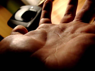 palm of my hand. by mlodygrabasz