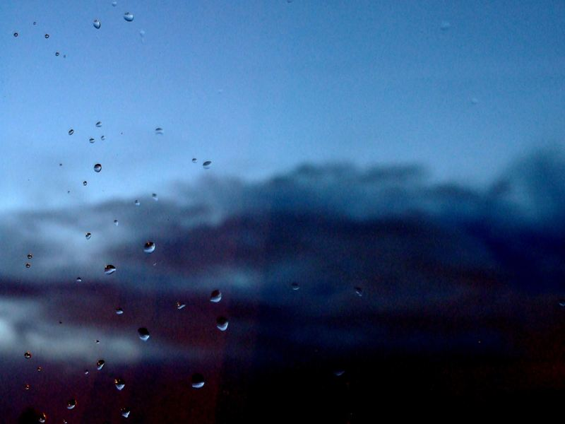 after a storm. by mlodygrabasz