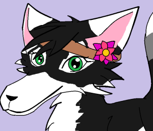 BlackFoxFlower's Profile Picture