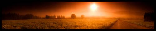 .dawn by orangebutt