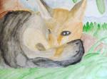 Fox by ruby989