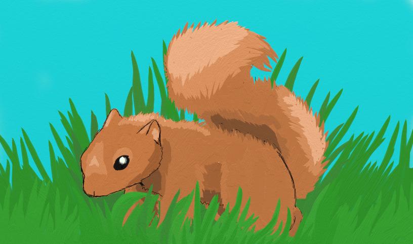 Squirrel! by ruby989