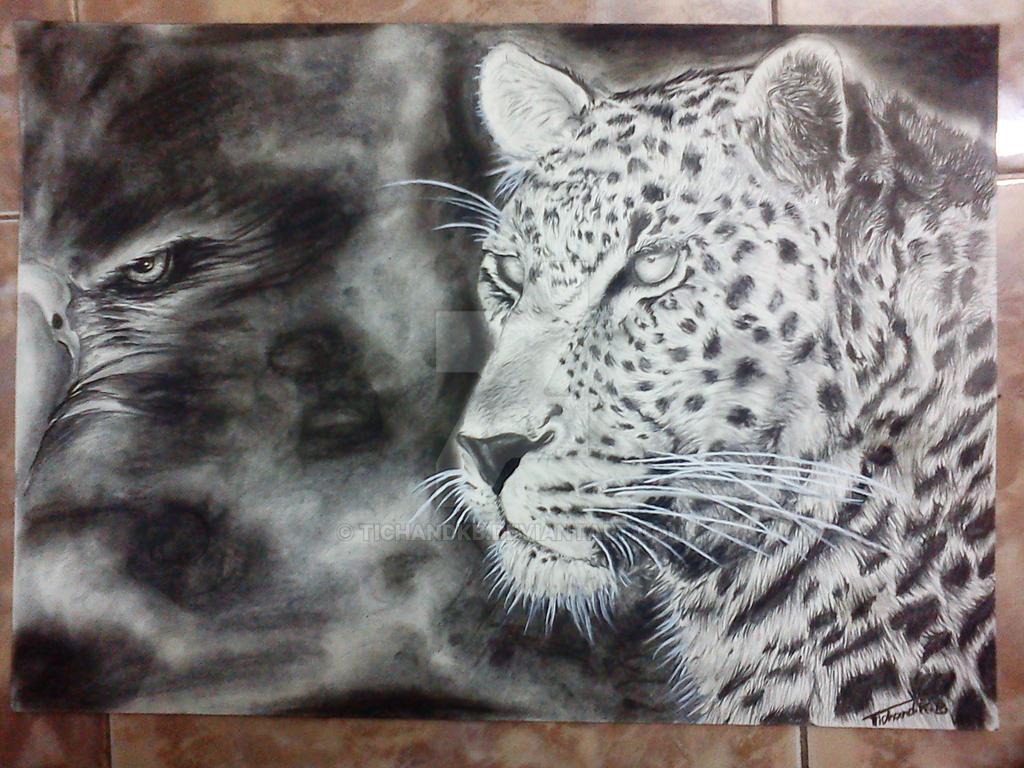 wild life illustration by TichandKB