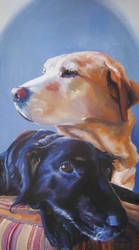Pet Portrait- Dexter and DeeDe by y0uiip
