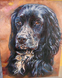 Luther the Spaniel by y0uiip