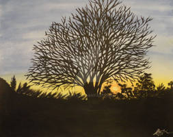 Tree of Life Silhouette