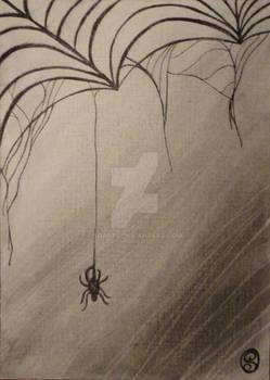 365DCCDay63 Spider Creep