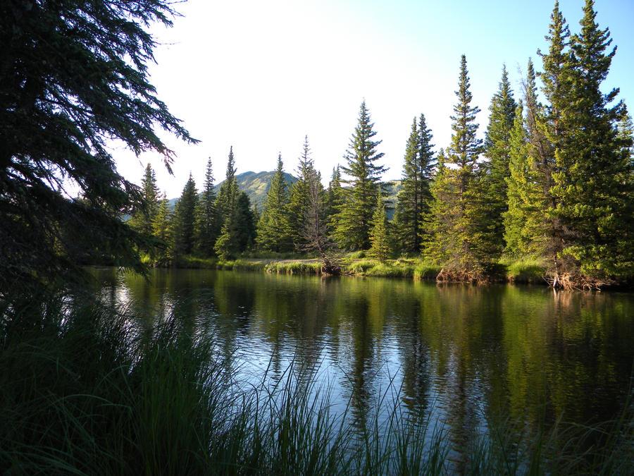 Wild Hay River