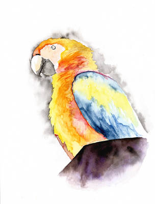 Parrot on Chimney by BigAlien