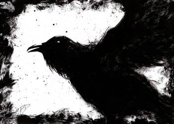 Raven-phoenix by BigAlien